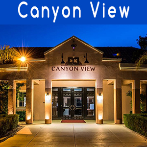 Canyon View