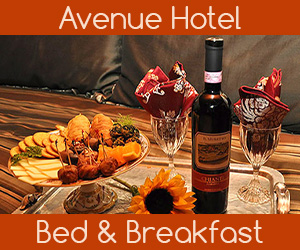 Avenue Hotel Bed and Breakfast Gay & Lesbian Friendly Inn