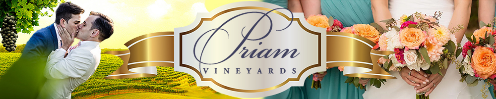 Connecticut LGBT-Friendly Vineyard for Same-Sex Weddings