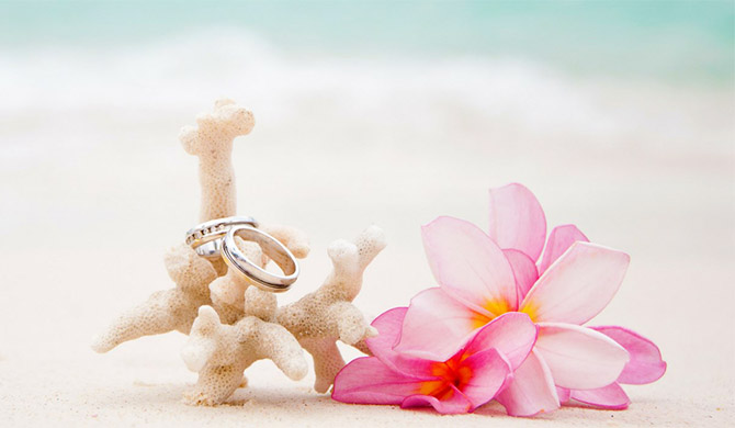 Coral, Wedding Bands and Flower - Pride Wedding Ceremonies
