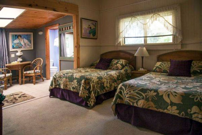 Aloha Junction B & B - Alpine room