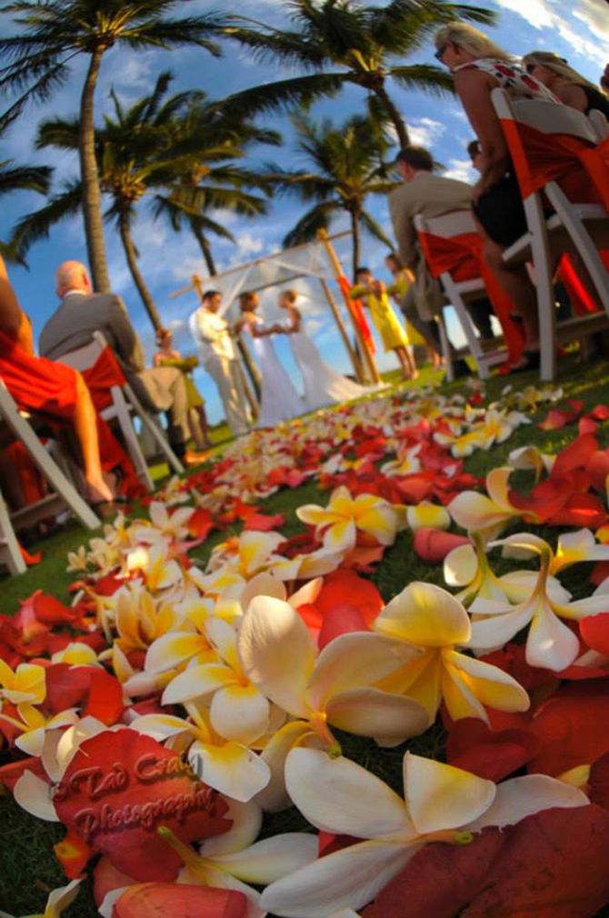 Purple orchid Wedding - Path of red and yellow orchids leading to the alter same-sex wedding ceremony
