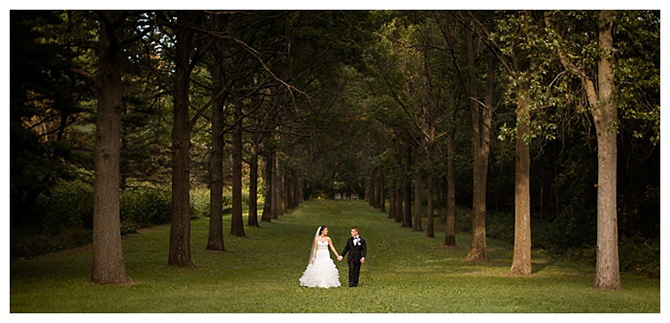 wedding day in the woods - DeAnda Photography - Chicago, Illinois