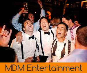 Chicago Gay Wedding DJ Entertainment