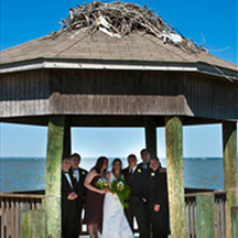 Photographic Pages - Wedding party in gazebo