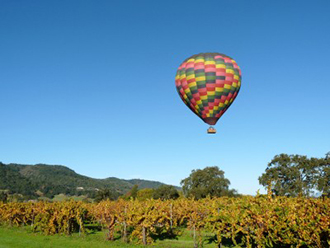California Wine Country Wedding Packages Balloon Over Grape Field