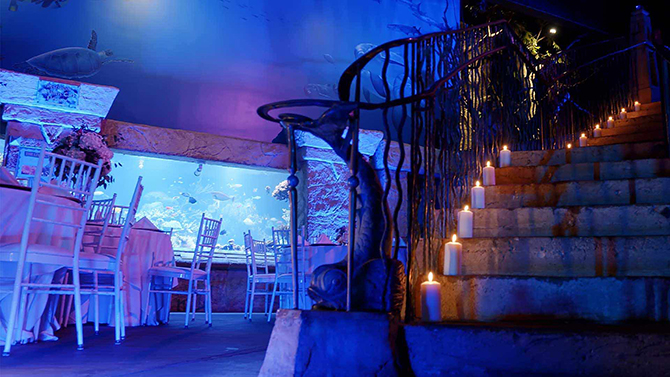 Aquarium Wedding - Atlantis Banquets and Events - Long Island, New York LGBT Wedding Receptions
