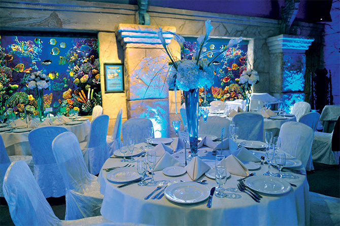 Atlantis Banquets and Events - Reception venue with aquarium tropical fish