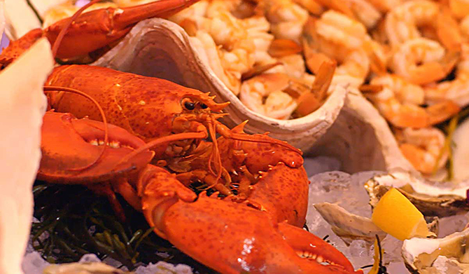 LObster Fest - Atlantis Banquets and Events - Long Island, New York LGBT Wedding Receptions