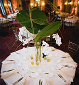 EM - Event Management - Large reception table centerpiece