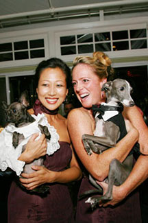 EM - Event Management - Lesbian couple with dogs in formal wear