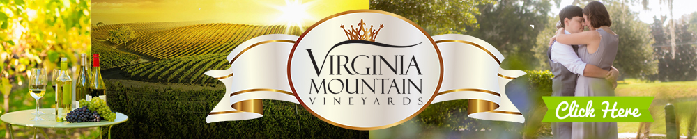 Virginia LGBT Wedding Venue