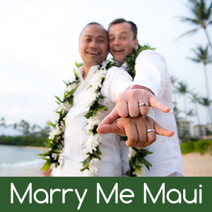 gay wedding Search - XVIDEOSCOM